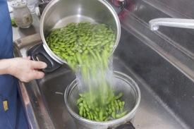 朝採りのだだちゃ豆