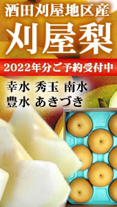 2017年分 鶴岡産白山だだちゃ豆飯場開始