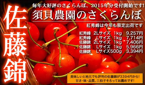 2015年須貝農園さくらんぼ