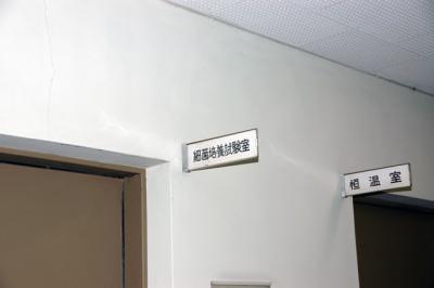 blog2008_20080531-DSC_9276.jpg
