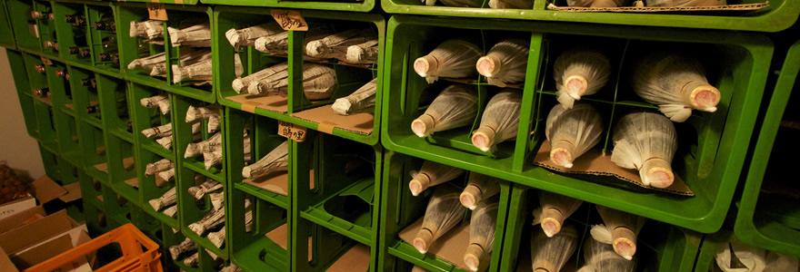 vintage-sake-3.jpg